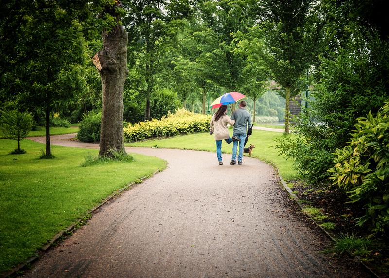 fun in the park raining and pet dog under umbrella avenham park preston